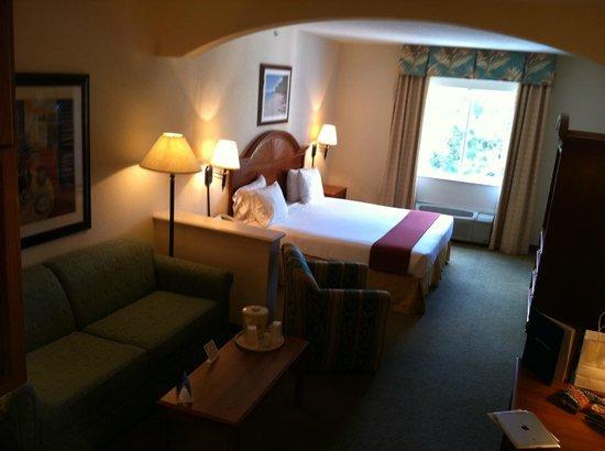 Holiday Inn Express Hotel and Suites Orlando-Lake Buena Vista South : Holiday Inn Express Orlando-Lake Buena Vista