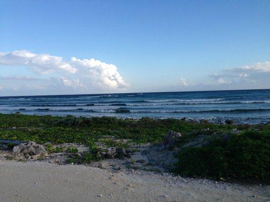 Punta Sur Eco Beach Park: Gorgeous views