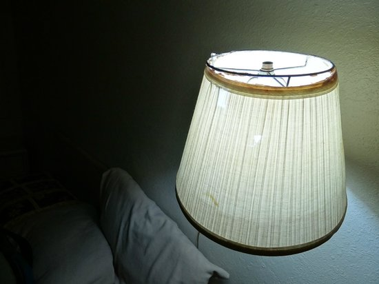 Safari Motor Inn - Joshua Tree: the lamp shade that says it all.