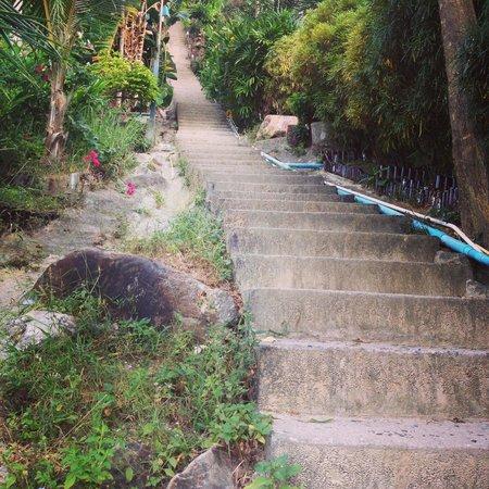 Phi Phi Arboreal Resort: 195 ступеней до номера