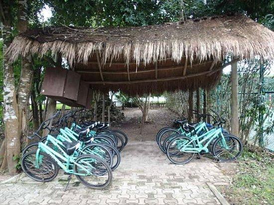 Grand Sirenis Riviera Maya Resort & Spa: Bicycles for use