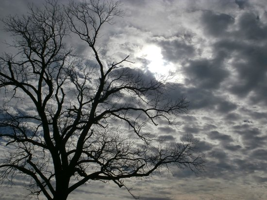 Pea Ridge National Military Park: Winter sky