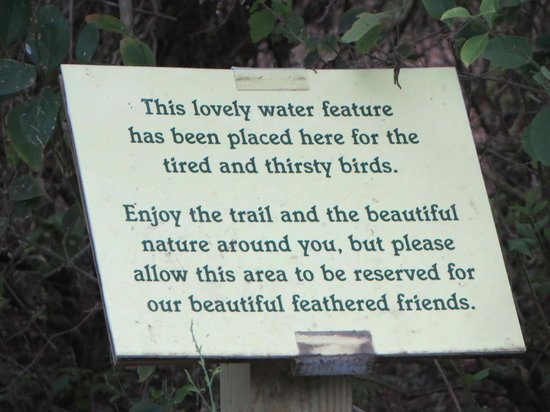 Laguna Madre Nature Trail : Brook for Tired Birds