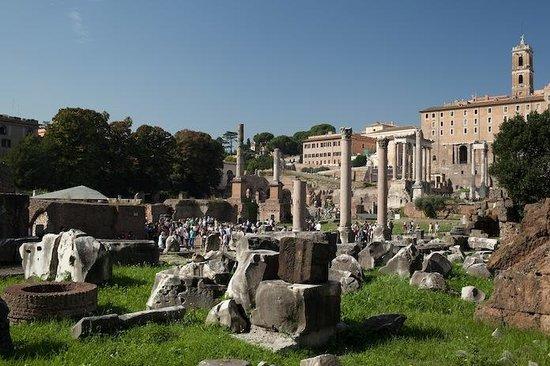 City Wonders: Ruins at the Roman Forum