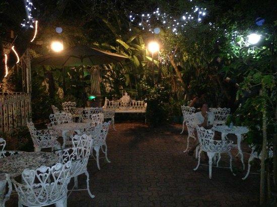 Flor de Michoacan: Back garden again