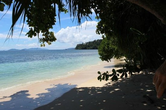 Raja Ampat, Indonesien: beach in front of the resto