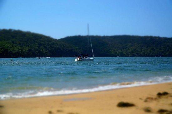 Mantra Ettalong Beach: Beach