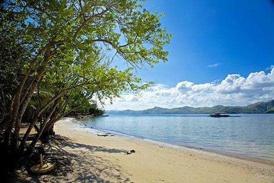 El Rio y Mar Resort: Eastern grounds of El Rio y Mar.