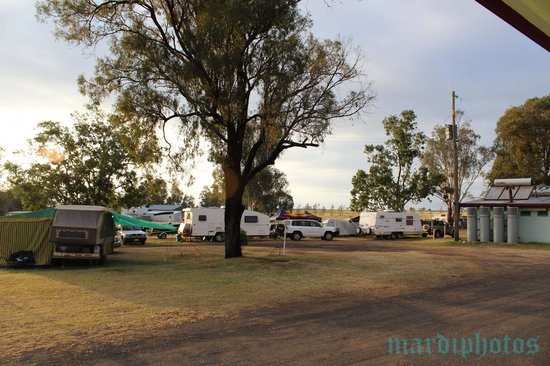 Lake Coolmunda Caravan & Cabin Holiday Park: Camping grounds in the front of the park