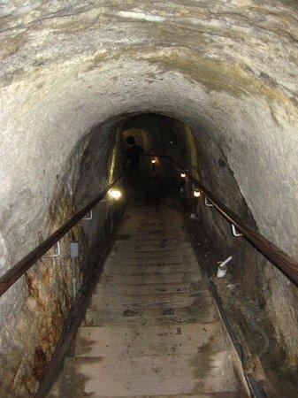 La Jolla Cove : ラホヤの洞窟(のびりは結構きつい)