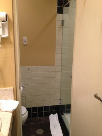 Belmond Sanctuary Lodge: $765 / night:  Here's the whole bathroom