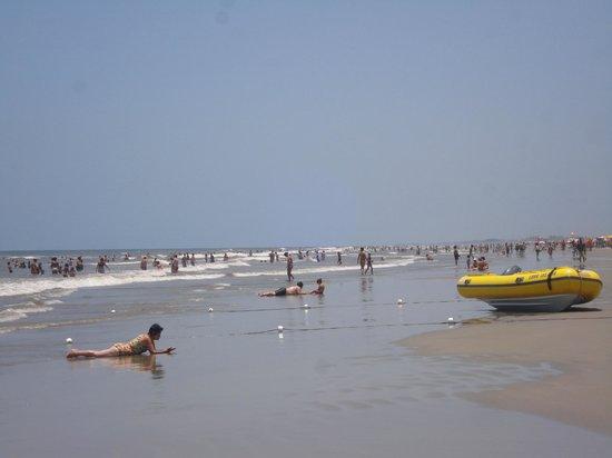 Ponta da Trincheira Beach
