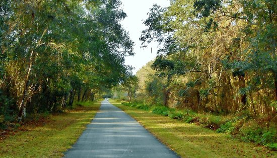 Bushnell Bed and Breakfast: Bicycle Trail Nearby