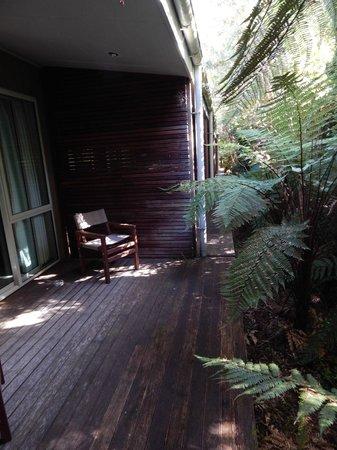 Punga Grove Motel & Suites: The rainforest deck
