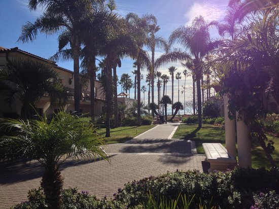 The Fess Parker - A Doubletree by Hilton Resort: looking out to the water