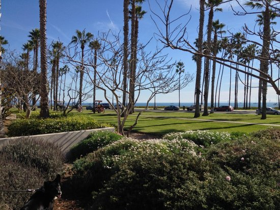 The Fess Parker - A Doubletree by Hilton Resort : beautiful beach view from grounds