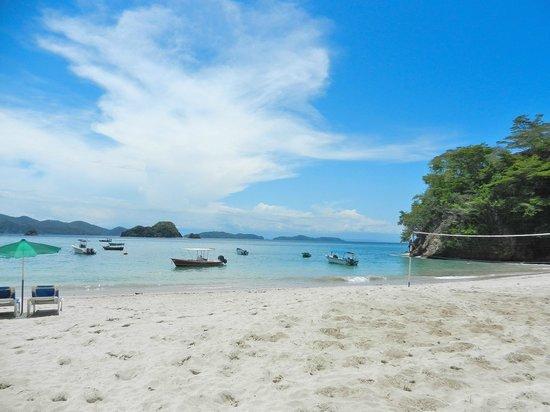 Tortuga Island Hotels