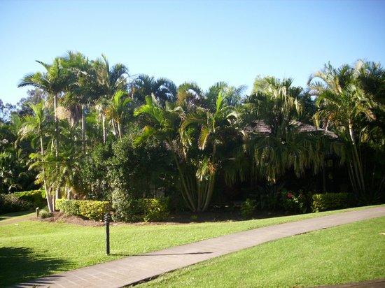 BreakFree Aanuka Beach Resort: Gardens