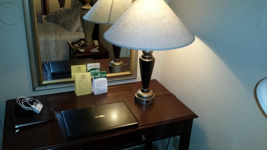 Alexis Park Resort : this is a desk lamp?