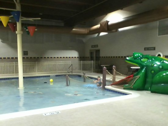 Hampton Inn and Suites Chicago / Aurora: Kiddie pool with Frog Slide