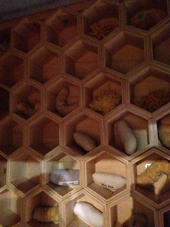 Mobius Kids: Awesome traveling bee exhibit