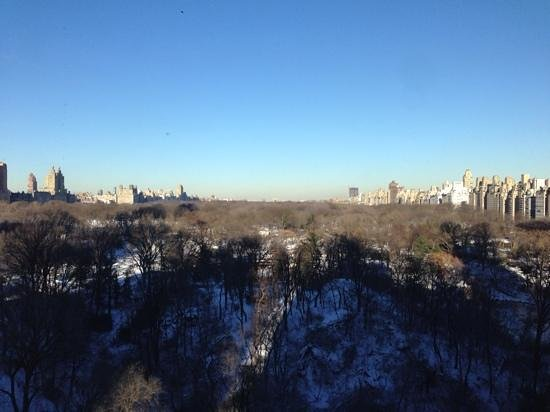 The Ritz-Carlton New York, Central Park: Room with a view