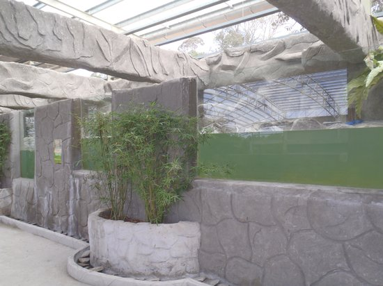 Bukit Gambang Resort City: Dirty water 1
