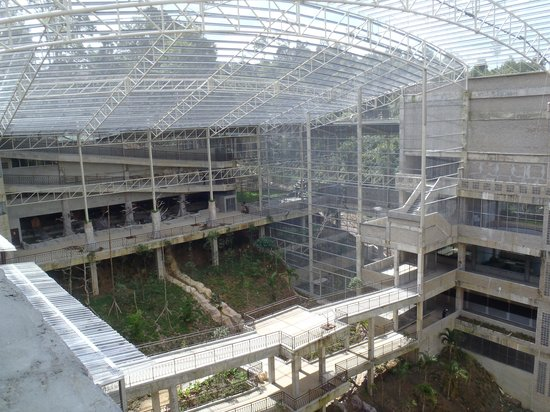 Bukit Gambang Resort City: Safari park construction 1