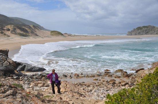 Robberg Nature Reserve : nice walk