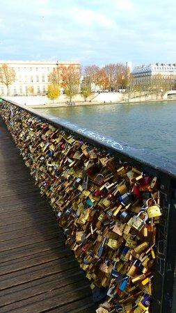 La Seine : Nice bridges crossing the Siene River