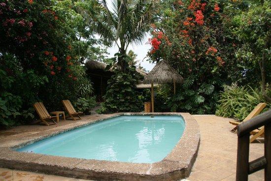 Hotel Manavai: la piscine dans un jardin magnifique
