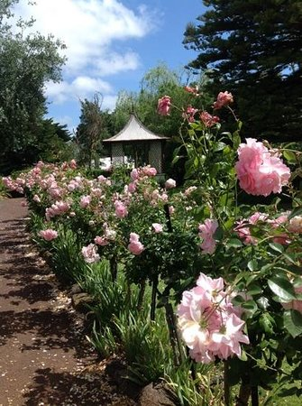Quamby Homestead: gardens