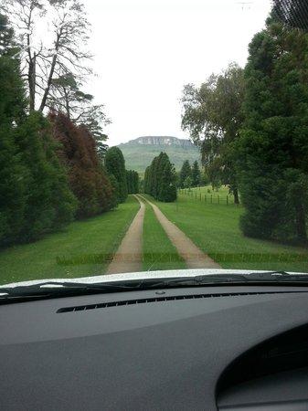 Silver Hill Lodge : The enterance