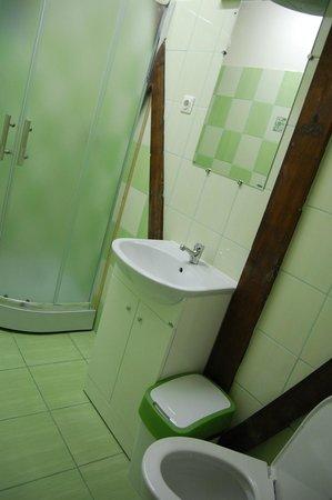 B&B Vilnius Home: Shower