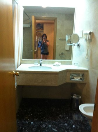 Grand Continental Flamingo Hotel : bathroom pic