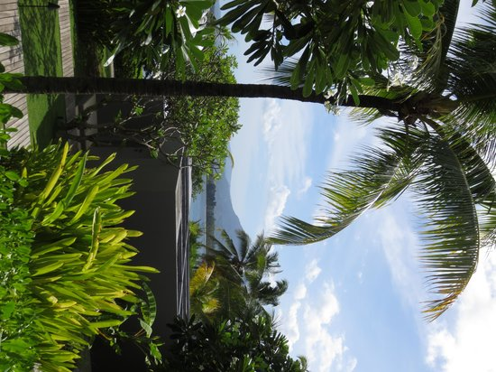 The Lombok Lodge : View from the room