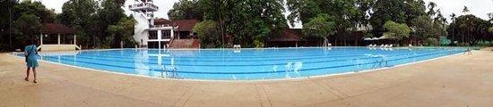 Imperial Chiang Mai Resort & Sports Club : 50Mプール、他のお客さんが居なかったことも有り、貸し切りできました。