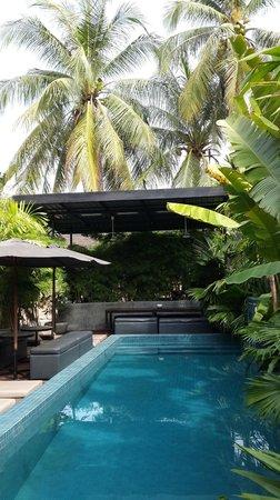 Kia Kaha Villa : Pool Area