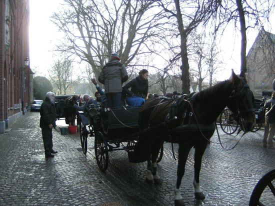 Horse Drawn Carriage Tours: Stopping at the Minnewater