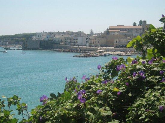 Tenuta Turchi: Otranto