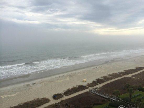Carolinian Beach Resort : 11th Floor Oceanview