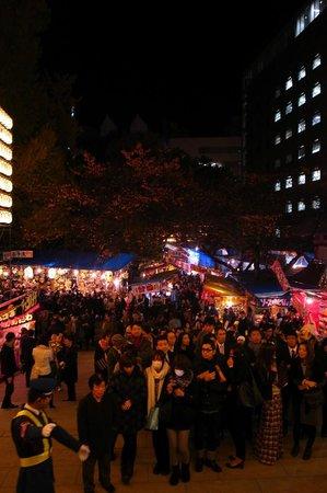 Hanazono Shrine: 酉の市