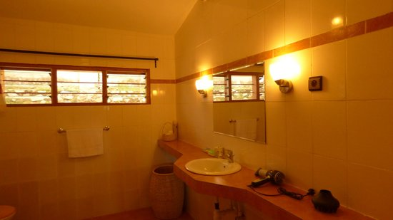 Aparthotel Jardin Tropical : Bathroom