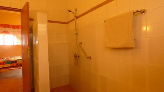 Aparthotel Jardin Tropical : Italian shower
