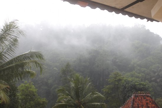 Ayung Resort Ubud : misty day from the forest - view from room
