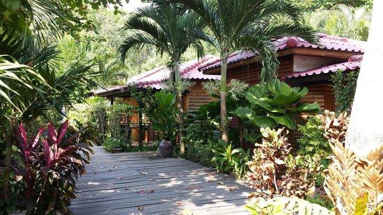 Tonsak Resort: Тонсак