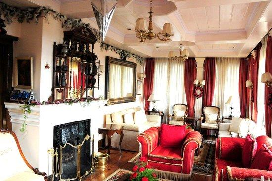 The Elgin, Darjeeling : Fireplace
