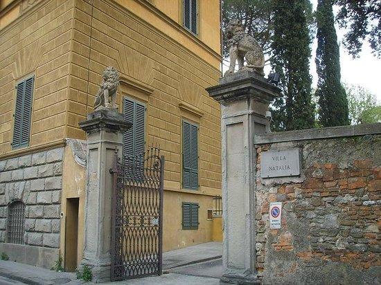 Photo of Villa Natalia Florence