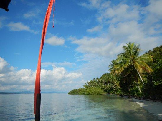 Raja Ampat Dive Lodge: Vista dalla piattaforma sulla spiaggia