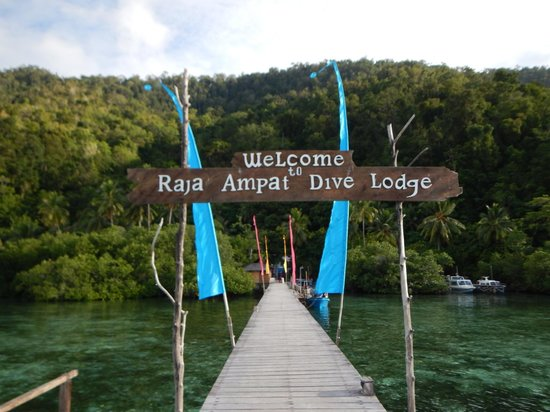 Raja Ampat Dive Lodge: Pontile
